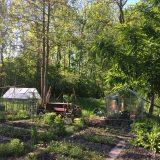 kleine tuin(en)