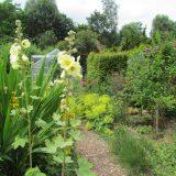 nieuwe tuin